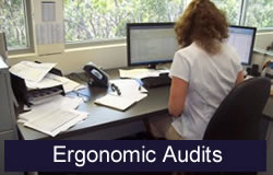 Ergonomic Audits